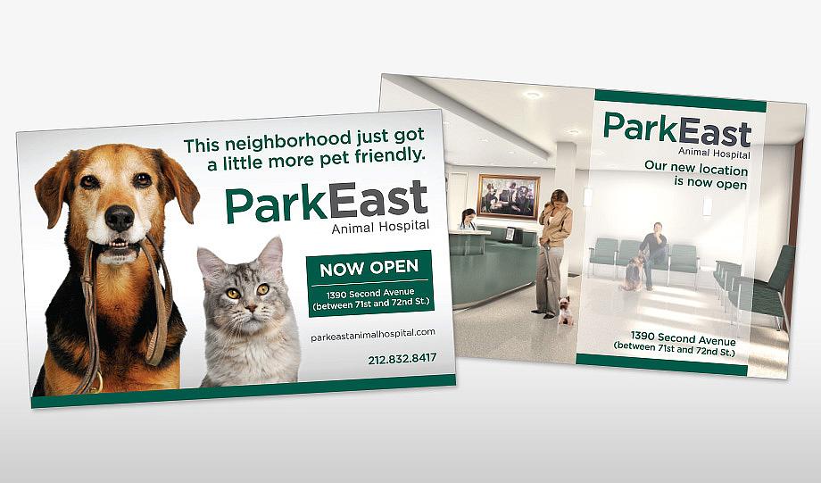 Park East Animal Hospital Postcard Mailers